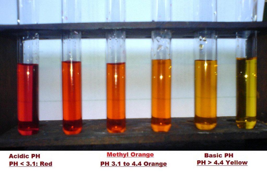Activity 2.1 Class 10 science Methyl orange