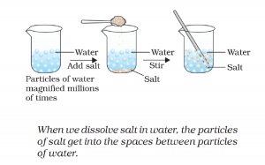 Activity 1.1 Explanation NCERT Science Class 9