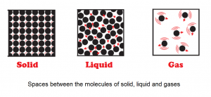 Activity 1.11 Explanation NCERT Science Class 9