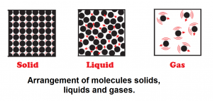 Activity 1.6 Explanation NCERT Science Class 9