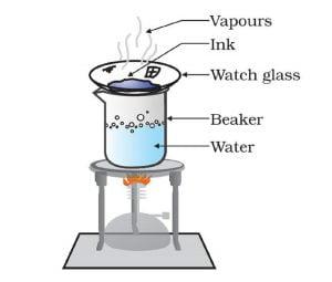 Activity 2.4 NCERT Class 9 Science