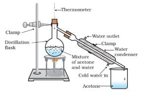 Activity 2.8 NCERT Class 9 Science