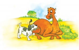 How the Camel got his hump Hindi Summary