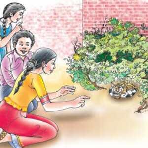 A Gift Of Chappals Hindi Story/Hindi Translation Chapter 2 Honeycomb Class 7